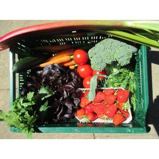 Regio Gemüse-Obstkiste klein