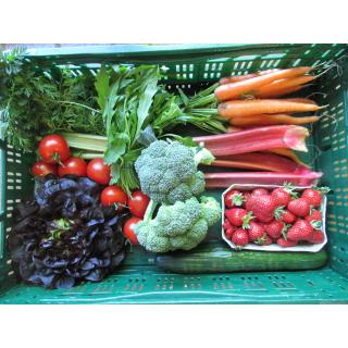 Gemüse-Obst-Kiste  mittel