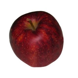 "Äpfel ""Jonagold"""