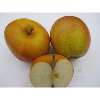 """Äpfel """"Boskoop"""""""